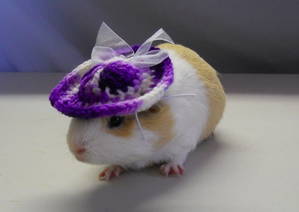Damsel in her Purple Hat