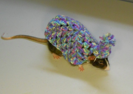 Little Mac in Granny Square Sweater with matching Hat